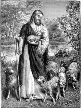Shepherd and the lambs