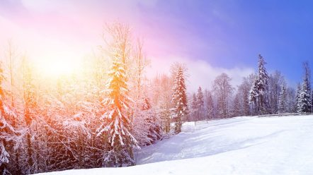 winter-magic-clouds-snowy-splendor-time-landscape-lovely-snowflakes-fence-tree-trees-peaceful-nature-mountains-sky-amazing-view-snow-sunset-sunlight-desktop-pictures-1366x768